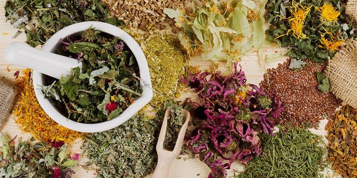 травы способствующие похудению и очищению