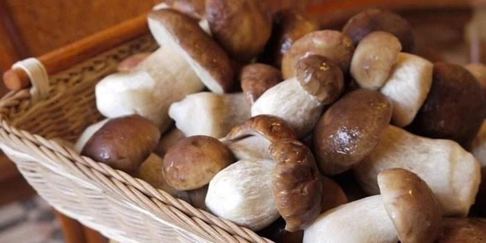 полезные свойства грибов для похудения