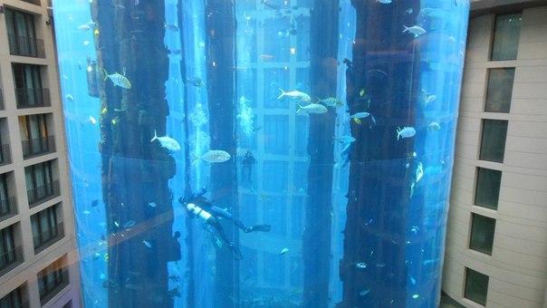 Baltic Aquarium