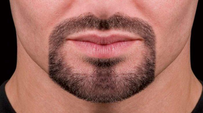 модная мужская борода эспаньолка 2018, фото